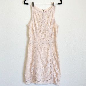 Chelsea and Violet Blush Pink Fully Laced Dress M